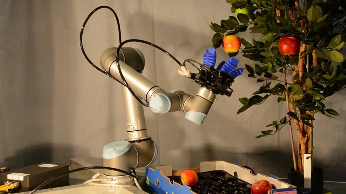 Automatización robótica de procesos manuales y tradicionales
